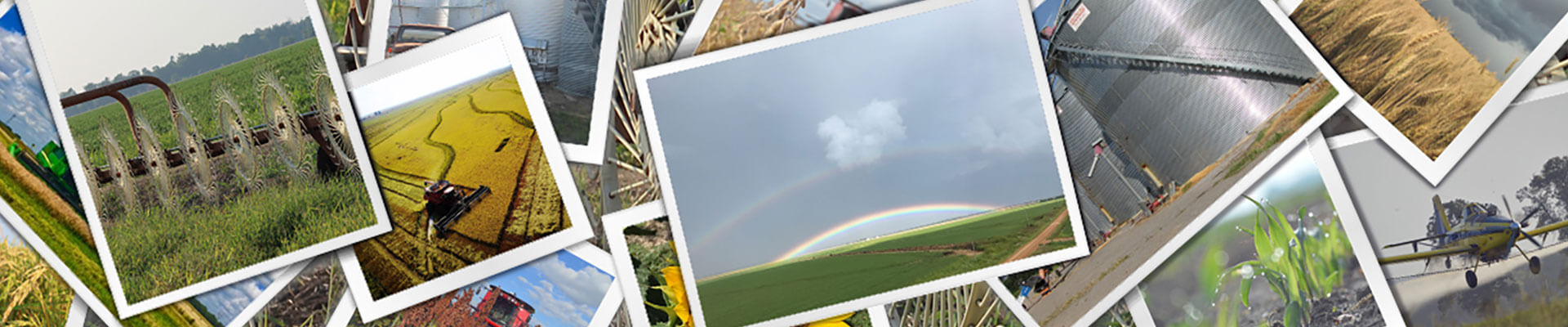 A collection of various photos taken by Farmers.