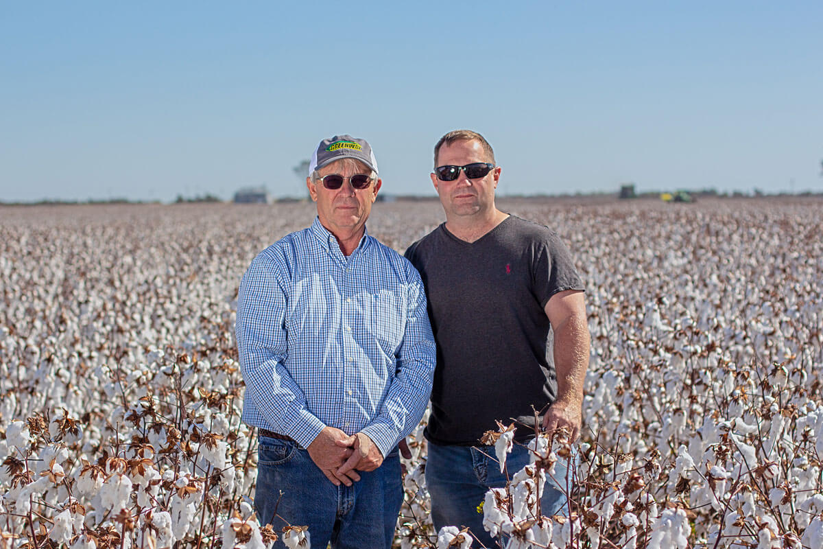 Two farmers standing in their cotton field