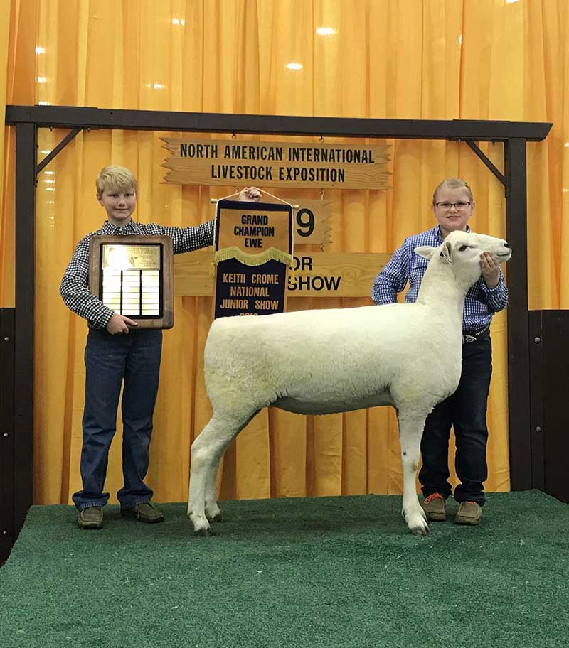 The Clayman siblings with their grand champion ewe.