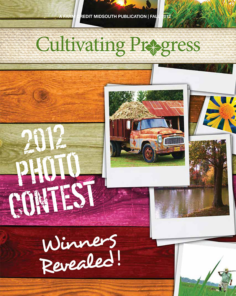 2012 Fall Cultivating Progress Cover