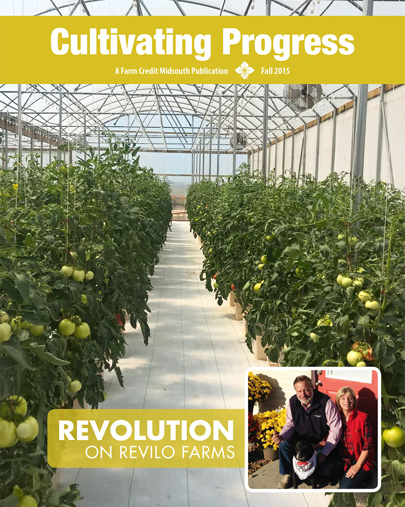 2015 Fall Cultivating Progress Cover